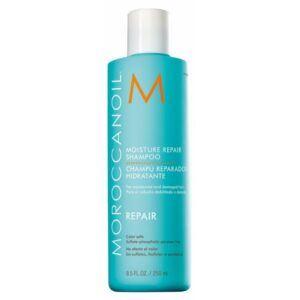 MOROCCANOIL® Moisture Repair Shampoo 250 ml